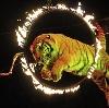 Цирки в Нижнем Тагиле